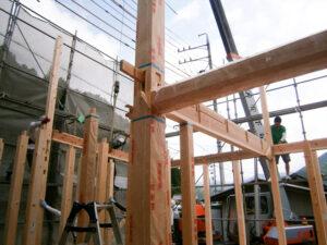 手刻みの木材がどんどん木組みされていく上棟の様子